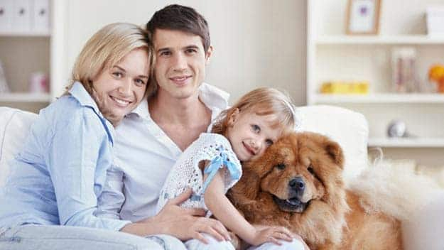 Wills & Trusts dog-young-family Direct Wills Sonning